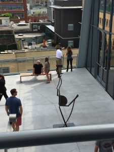 Outdoor Spaces at The Whitney
